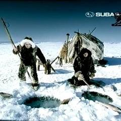 Subaru_Surfer
